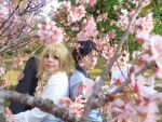 Your lie in April by RobinYume