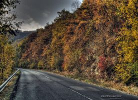 Road into the unknown by stevethesupervisor