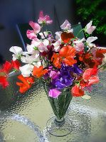 A bouquet of Sweet Peas by happytimer