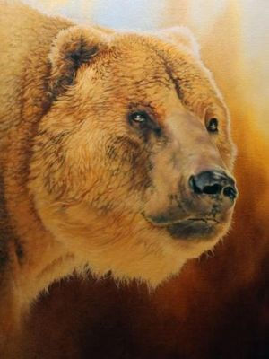 Grizzly by Dan-Harding