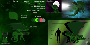 Dragon's New Ref by DragonThunderstorm