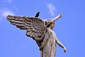 black wings on top angel by laloxxx