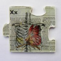 X is for X-Ray by hogret