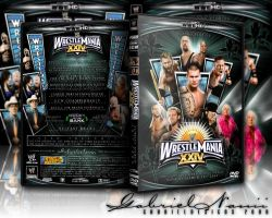 WWE Wrestlemania 24 DVD Custom by TheNotoriousGAB