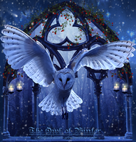 The Owl of Winter by Melanienemo