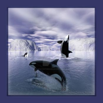 Antarctica by 1footonthedawn