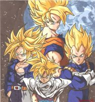 The Four Super Saiyans by Swamnanthas