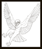 The Harpy Boy -lineart- by shorty-antics-27