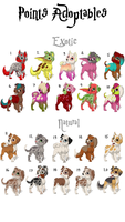 Puppy Adoptable  Set 1 by Chuy-Adoptables