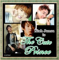 The Cute Prince by suigintou-loever