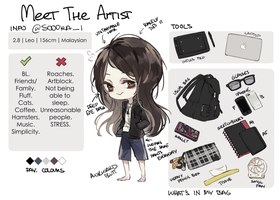 Meet The Artist | Meme by Sooora-i