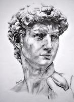 Michelangelo`s David by AwesomeNickname