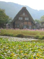 Shirakawago (20) by Debals