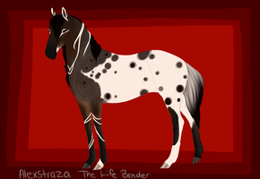 4205 TK's Alexstraza by Tempest-Keep-Stables