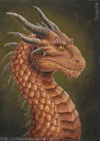 Dragon ACEO by Strecno
