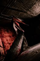 Pyramid head by Wakaleo