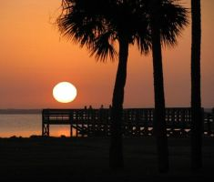 Florida morning by heatherspettals