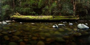 Gloucester River by mental3pal