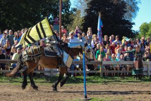 Minnesota Ren Faire-56 by blaird83