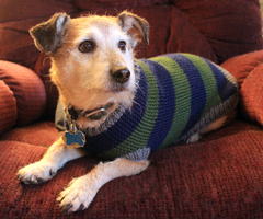 Buddie's Knit Sweater by Little-Moose