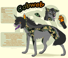 Cobweb Reference by fatakita