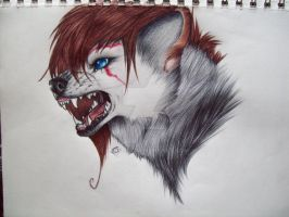 Commission4- Shellathewolfie by Penfell