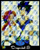 A DBS card by agra19