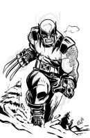 Wolverine In The Mountains - Warmup Sketch by EryckWebbGraphics
