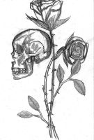Skulls and Roses by 1aiden1