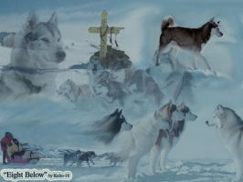 Eight Below by kaito-18
