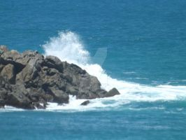 Petrel Cove Point by tablelander