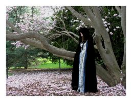 In a Glade 03 by cera
