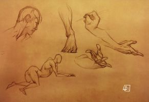 Life Drawing 20 by marvelmania