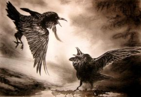 Confusion Ravens by kenket