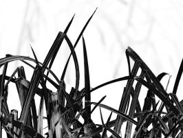 grasses by awjay