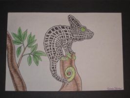 Chameleon by qwerty1198