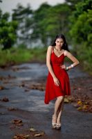 lady in red by russell910