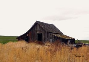 Tack Shed by TRunna