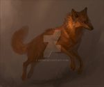 Copper by Kipine