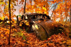 HDR Autumn Rust Bucket by Nebey