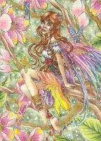 ACEO - Cherry Blossom Fairy by Jin-ju