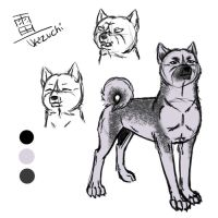 Character sheet - Ikazuchi by PatheticCreature