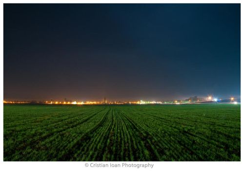 Night on Nature II by joanchris