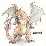 Charizard by Seylyn