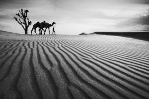 nomad bw by almiller