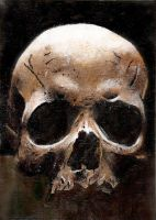 skull Series: 2 by musicophilia