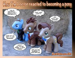 How The Doctor reacted to becoming a pony by HeyLookASign