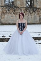Ice queen stock 55 by Random-Acts-Stock