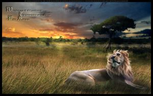 The Pride of a Lion by AlexLibby