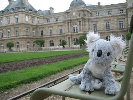 Koko at Jardin du Luxembourg by ddpalphatiger1